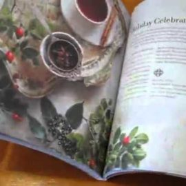 Infuse: Herbal teas to cleanse, nourish and heal infuse herbal teas to cleanse nourish and heal 270x270